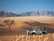 The Namib Dessert